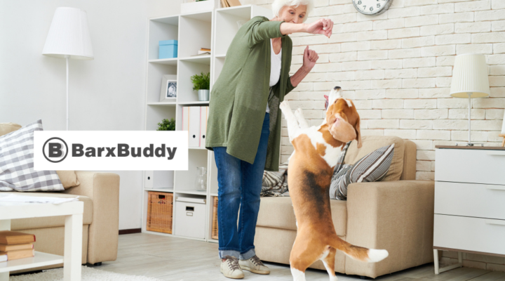 Dog Training Gadget Review: 5 Reasons Why You Should Consider Trying BarxBuddy